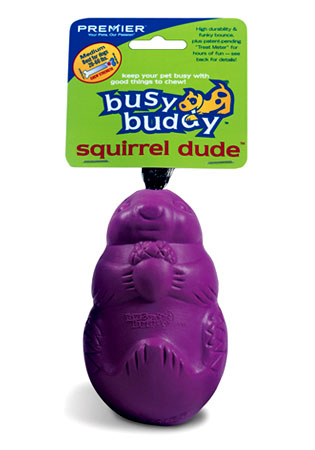 Busy Buddy- The Squirrel Dude
