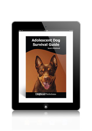 Adolescent Dog Survival Guide by Sarah Whitehead eBook