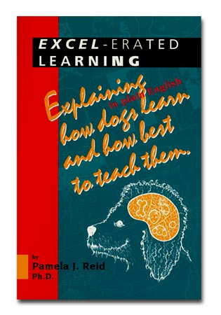 excel erated learning a book by pamela j reid phd caab in books