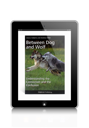 Between Dog and Wolf by Jessica Adams and Andrew Miller eBook