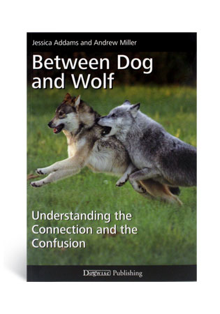 Between Dog and Wolf- A Book by Jessica Addams and Andrew Miller