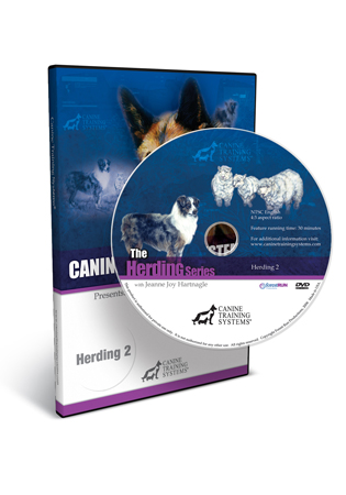 Herding II - Young Dogs