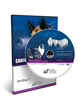 Herding III - Penning and Shedding
