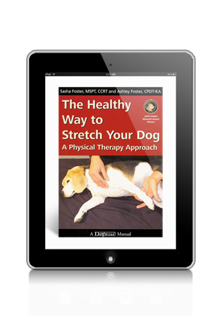 The Healthy Way to Stretch Your Dog-A Physical Therapy Approach by Sasha Foster eBook
