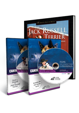 The Jack Russell Terrier Product Set
