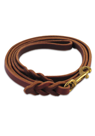 Braided Amish Leather Lead