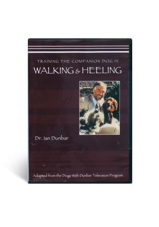 Training the Companion Dog 3- Walk on Leash, at Heel & Jumping Up
