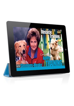 Competitive Agility Training with Jane Simmons-Moake 1- Obstacle Training Streaming (German)