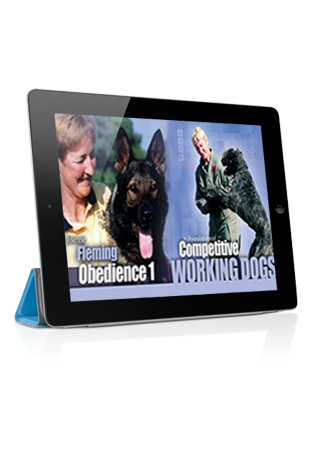 The Foundations of Competitive Working Dogs Obedience 1- Basic Skills Streaming (German)
