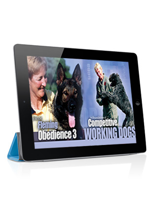The Foundations of Competitive Working Dogs Obedience 3- Heeling, the Recall and Motion Exercises Streaming
