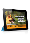 The German Shepherd Dog the German Way Video 4- Advanced Training, Conditioning and Handling with Ricardo Carbajal Streaming