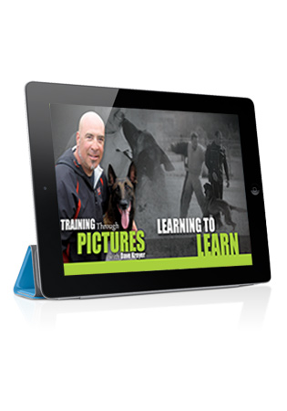 Training Through Pictures with Dave Kroyer - Learning to Learn Streaming