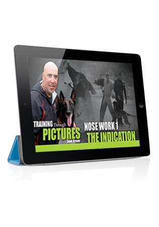 Training Through Pictures with Dave Kroyer- Nose Work 1 - The Indication Streaming