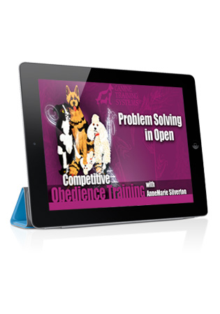 Competitive Obedience with AnneMarie Silverton- Problem Solving in Open Streaming