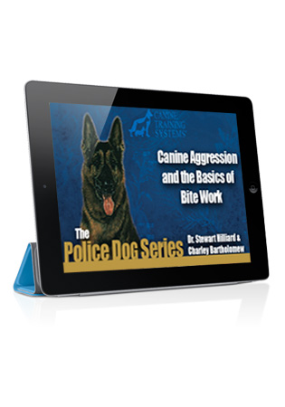 Canine Aggression and The Basics of Bite Work Streaming