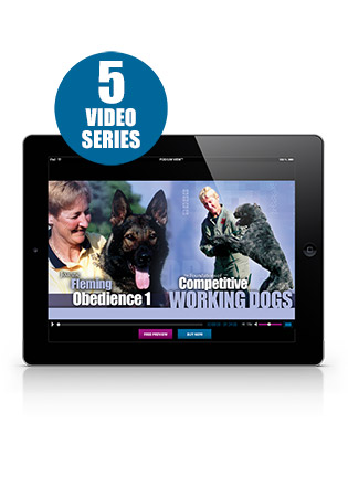 The Foundations of Competitive Working Dogs with Joanne Fleming-Plumb 5 Video Series Streaming