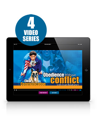 Obedience without Conflict DVD 1, 2, 3 & 4 Video Set Streaming