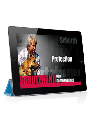 Schutzhund with Gottfried Dildei- Problem Solving in Protection Streaming (German)