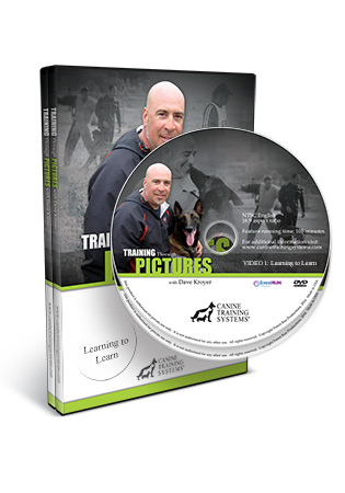 Training Through Pictures with Dave Kroyer Video 1 and 4 DVD Set