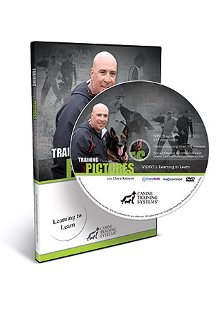Training Through Pictures with Dave Kroyer- Learning to Learn DVD