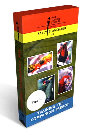 Training the Companion Parrot Tape 4- Preventing and Solving Problems
