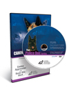 Canine Aggression and the Basics of Bitework DVD